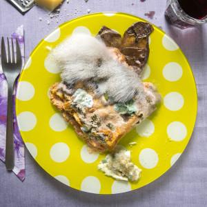 2_foto di Luigi Ceccon e Chiara Allione_Forgotten meal