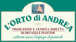 8_ortodiandrea